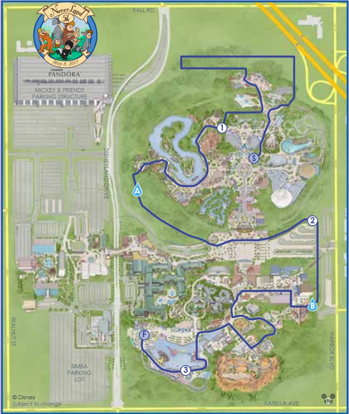 If you're going to run, might as well run through the Happiest Place on Earth!